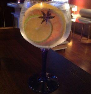 Gin Lowen de Lowen