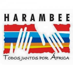 Todos juntos por Africa Harambee Fundacion Coso