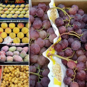 la-fruta-mercavalencia-by-sonia-selma