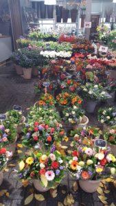 mercado-de-las-flores-o-bloemenmarkt-amsterdam-sonia-selma-2